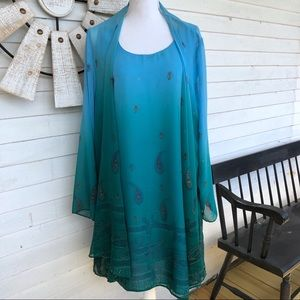 VINTAGE Blue & Green Ombré Chiffon Dress and Cover